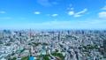 東京・タイムラプス・定番風景・初夏の爽やかな青空と緑が点在する都心全景・ワイド・パン 41964391