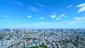 東京・タイムラプス・定番風景・初夏の爽やかな青空と緑が点在する都心全景・ワイド・fix 41964392
