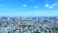 東京・タイムラプス・定番風景・初夏の爽やかな青空と緑が点在する都心全景・ナロー 41964393