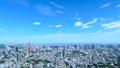 東京・タイムラプス・定番風景・初夏の爽やかな青空と緑が点在する都心全景・ズームアウト 41964395
