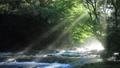 光さす渓谷(音声有り) 42002984