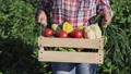 farmer fresh agriculture 42009402