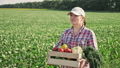 farmer fresh agriculture 42009410