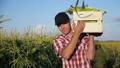 農夫 農家 農民の動画 42009602