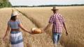 むぎ ムギ 小麦の動画 42009605