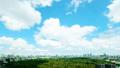 东京风景·时间间隔·夏天天空·宽·市中心全视图·天空树到东京塔·carrage 42057213