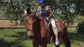 horse, girl, animal 42151651