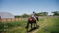horse, girl, animal 42151656