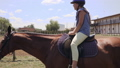 horse, girl, animal 42151686