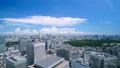 Beautiful Tokyo landscape · Time lapse · Aozora and green · summer · Shinjuku desire · Urban panoramic view · pan 42238947