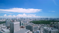 Beautiful Tokyo landscape · Time lapse · Aozora and green · summer · Shinjuku desires · Overall view of the city center · zoom in 42238950