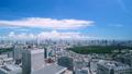 美丽的东京风景·时间流逝·Aozora和绿色·夏天·新宿欲望·市中心的整体视图·放大 42238950