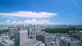 Beautiful Tokyo landscape · Time lapse · Aozora and green · summer · Shinjuku desires · Urban whole view · zoom out 42238951