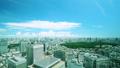 美丽的东京风景·时间流逝·Aozora和绿色·夏天·新宿欲望·市中心的整体视图·颜色分级 42238953
