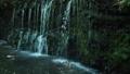箱根千条の滝  42293532