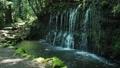 箱根千条の滝  42293533
