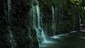 箱根千条の滝  42293534