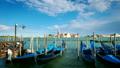 威尼斯 长平底船 意大利 42311688