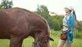 動物 馬 牧場の動画 42594221