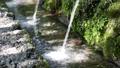 湧水 清流 湧玉池 42648989