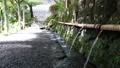 湧水 清流 湧玉池 42648993