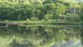 나가노 현 가쿠 거울 연못 42711862
