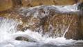 水 水流 流 42797275