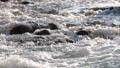 水 水流 流 42797281