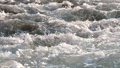 水 水流 流 42797282