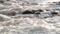 水 水流 流 42797284