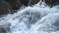 水 水流 流 42797285