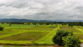 Drone shot aerial view scenic landscape of agricul 42824220