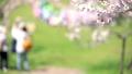 ลูกท้อ,บ๊วย,ดอกไม้ 42838806