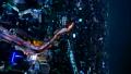 垂直的材料東京夜視圖,時間間隔,池袋 42883643