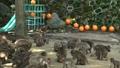 ここは高崎山と言う山です、 ここでは、野性猿が食べ物を食べるために、餌場に集まります、 42925927