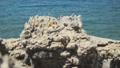 Wave splasing about stones on mediterranean sea. FullHD 43012253