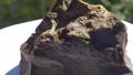 Jasper Mineral Rock 43053521