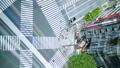 垂直材料东京·银座·关崎路口·时间流逝·8月假日面包 43057564