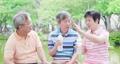สูงวัย,พูดคุย,แชท 43068289