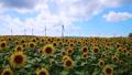 布引風の高原の風車・タイムプラス(郡山市・湖南町) 43183036