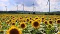 布引風の高原の風車・タイムプラス(郡山市・湖南町) 43183037