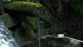 사찰 신사 일본식 일본식 일본 데 미즈 야 Osaka Temple Japan 43219448