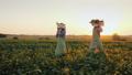 couple, walking, farmer 43237952