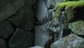 사찰 신사 일본식 일본식 일본 데 미즈 야 Osaka Temple 43260136