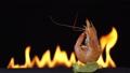 กุ้ง,อาหารทะเล,บาร์บีคิว 43267734