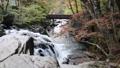 秋の山鶏滝・やまどりたき(福島県・平田村) 43315034