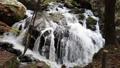 秋の山鶏滝・やまどりたき(福島県・平田村) 43315036