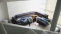 酔っぱらい 寝ている 寝てるの動画 43352032