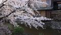 เกียวโต,สถานที่ท่องเที่ยว,ถนน 43363306