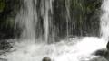 瀑布 沼泽 河 43389058
